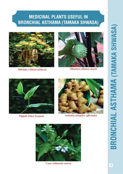 Evidence based Ayurvedic Practice by CCRAS - Central council for